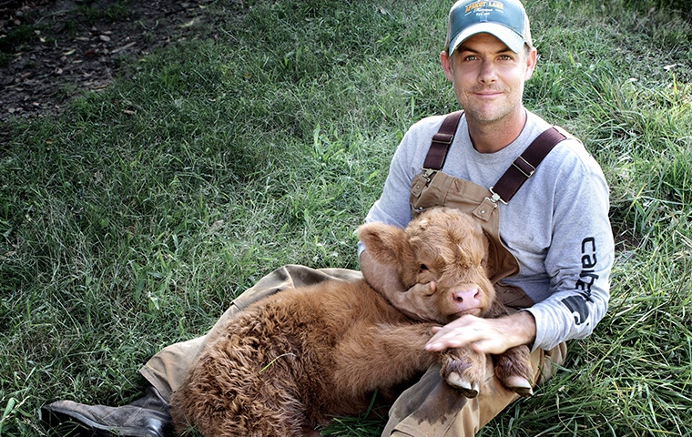 man sitting on grass holding brown baby calf
