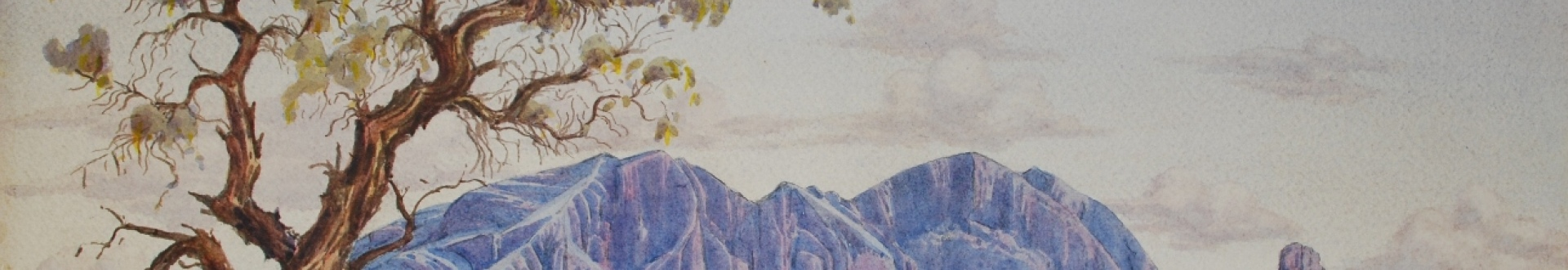 Albert Namatjira, Mount Sonder with Corkwood Tree